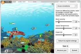 reefs 1